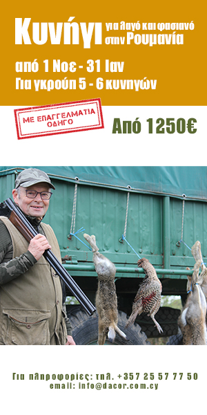 Hunt Hares and Pheasants in Romania